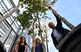 Sette alberi per sette atenei al Campus di Sesto in nome del clima