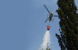 In Toscana 7 milioni di euro per la manutenzione delle foreste