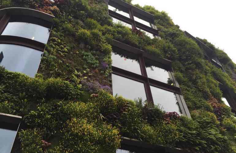 """Tutto il mondo green plaude al """"Bonus Verde"""""""